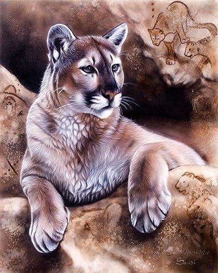 heroico frase Nosotros mismos  Wowdecor - Kit de pintura por números para niños adultos, pintura con  número – Puma 16 x 20 pulgadas Framed: Amazon.es: Hogar