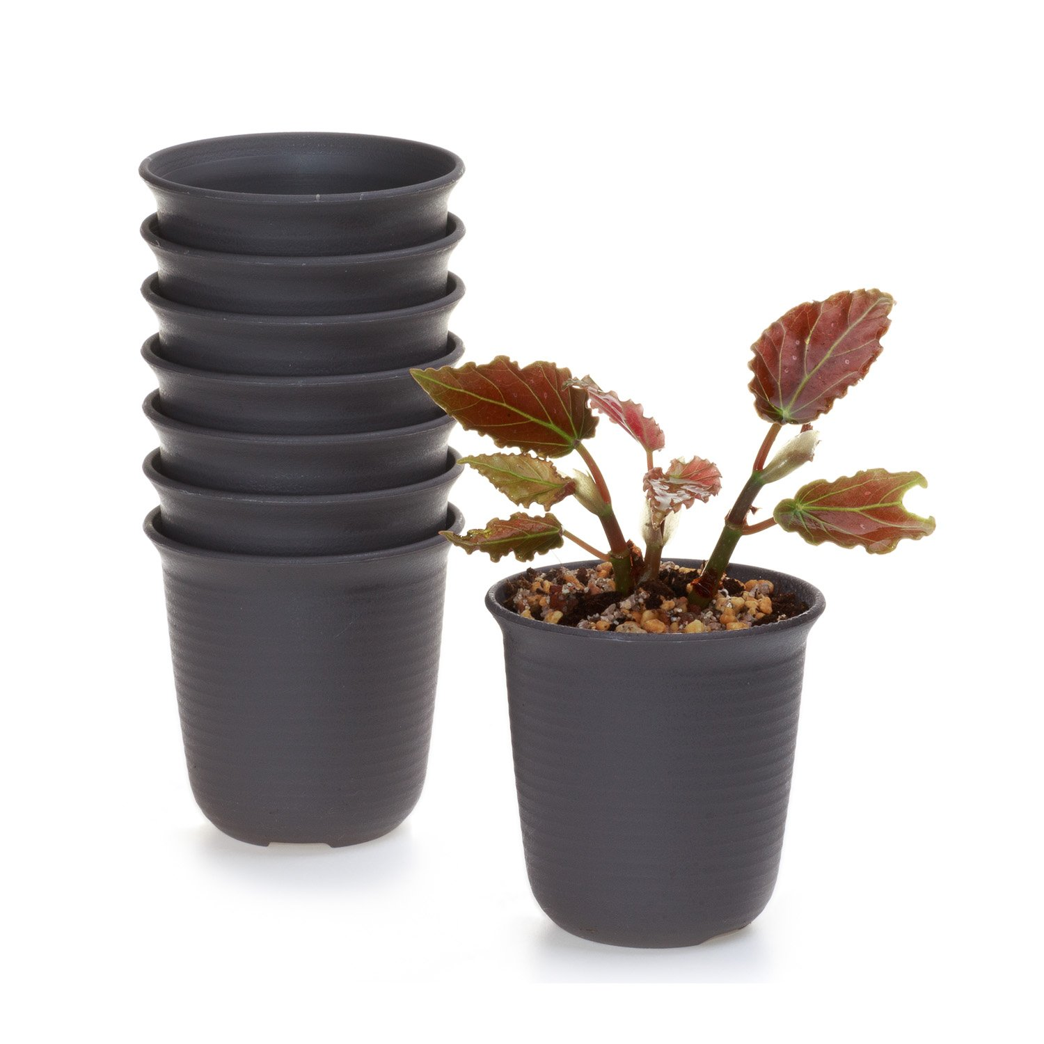T4U 4.75 Inch Plastic Round Plant Pot Cactus Flower Pot Container Brown Set of 8,Seeding Nursery Planter Pot with Drainage for Flowers Herbs African Violets Succulents Orchid Cactus Indoor Outdoor