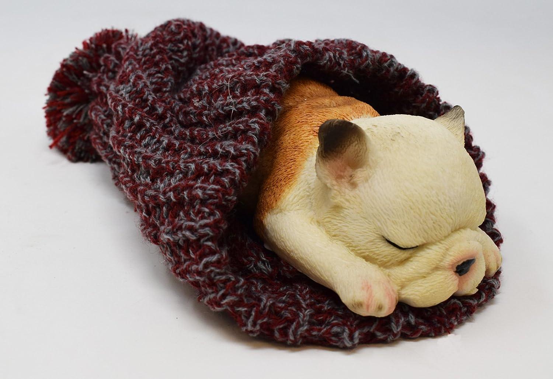 Dormir Bulldog Francés En Lana Gorro figura decorativa, adorno de regalo: Amazon.es: Hogar