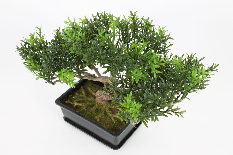 Bonsai decorativo in vasetto con rametti a foglia di t é