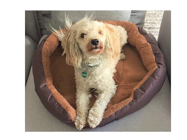 Cuccia per cani di taglia XL, diametro 70 cm, con cuscino double-face, marrone/beige, con imbottitura, lavabile, tessuto Oxford in pile, super confortevole e robusto