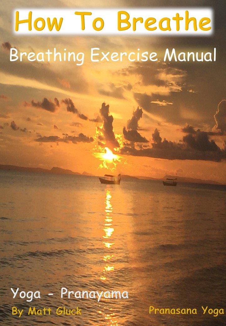How to Breathe: 1: Amazon.es: Matt Gluck, Dorna Djenab ...