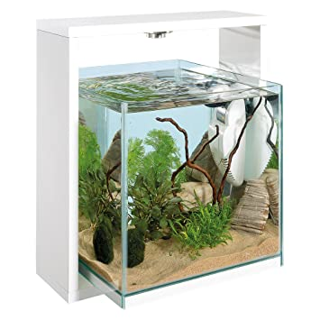 Ferplast Samoa 30 Open Acuario 38,6 x 30 x h 42 cm 25 L Color Blanco: Amazon.es: Productos para mascotas