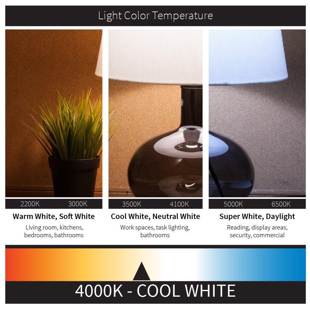 50W Incandescent Equivalent 3000K Warm White 6-Pack Sunlite 8-Watt Dimmable LED R20 Reflector Bulb E26 Medium Base