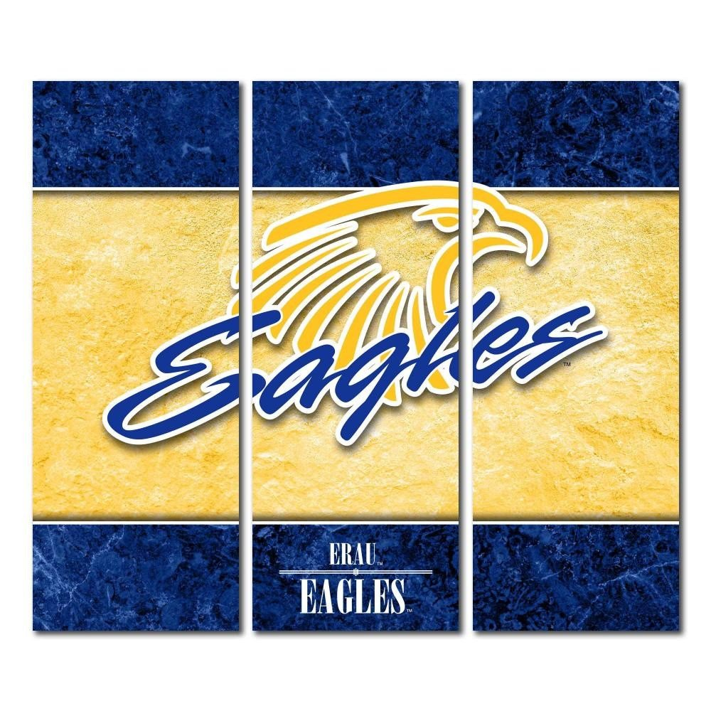 Amazon.com : Victory Tailgate Embry-Riddle Eagles Daytona Triptych ...