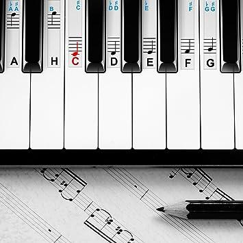 Pegatinas para piano y teclados, para instrumentos con 49, 61, 76 y 88 teclas, pegatinas de piano de alta calidad como ayuda de aprendizaje: Amazon.es: ...