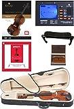 Cecilio CVN-100 Solidwood Student Violin with D'Addario Prelude Strings, Size 4/4 (Full Size)