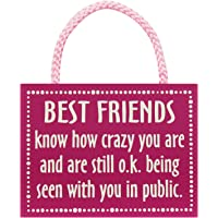 Best Friends - Wooden Hanging Sign by My Word!