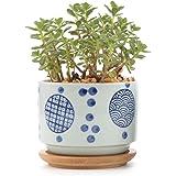 T4U 3 Inch Ceramic Japanese Style Serial No.2 succulent Plant Pot/Cactus Plant Pot Flower Pot/Container/Planter White