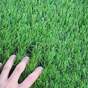 WS Artificial Grass Turf 5FTX8FT,1,38inch 4 Tone Synthetic Artificial Turf Rug for Dogs Indoor Outdoor Garden Grass Rug