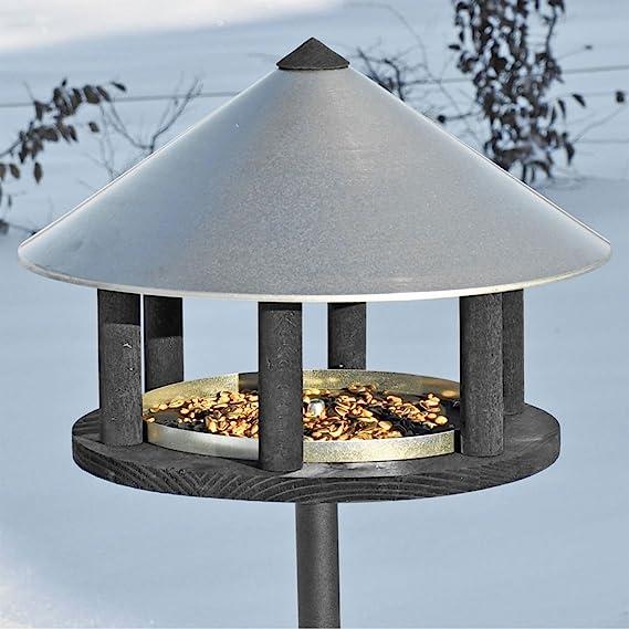 Vogelfutter zur Gewichtsreduktion Hühnchenzubereitung