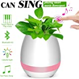 Amazon Com Green Light Rooting Hormone 2 Oz 06920a
