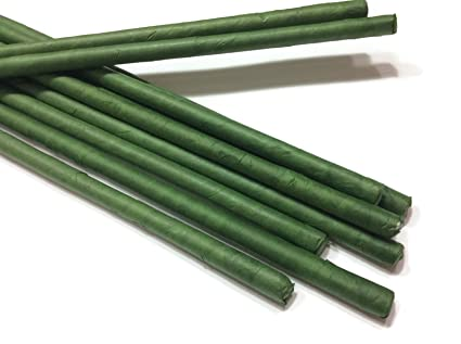 Green floral stem wire wire center amazon com stems wire large long big length 30 x 10 mm floral wire rh amazon com craft wire gauge chart craft wire gauge chart greentooth Image collections