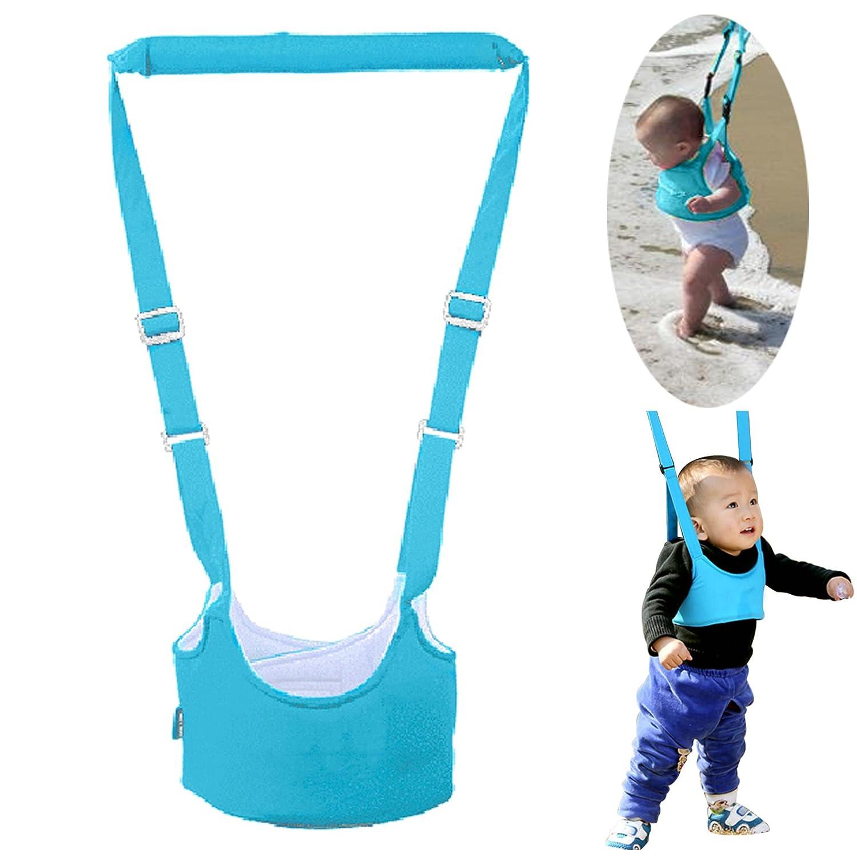7c828682b164 Amazon.com   Sealive Handheld Baby Walker Learning To Walk Toddler ...