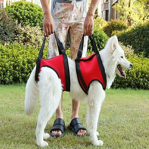 GLQ Dog Lift Support Arnés Rehabilitación Artritis Débil Piernas ...