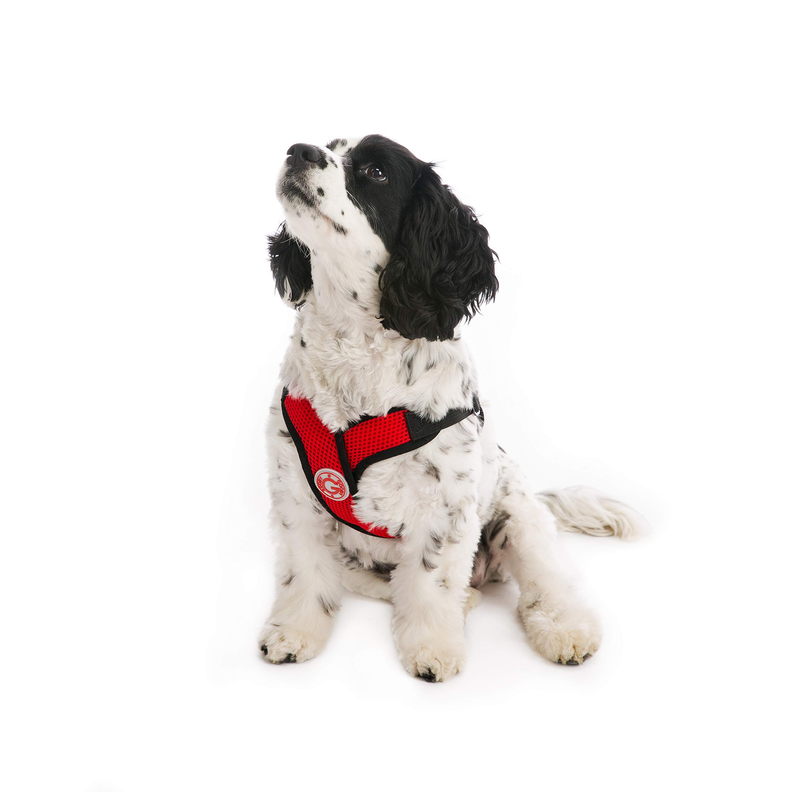 Gooby - Comfort X Step-in Harness, Choke Free Small Dog Harness with Micro Suede Trimming and Patented X Frame, Red, X-Large