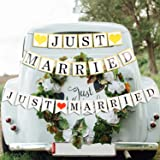 Just Married Banner for Car