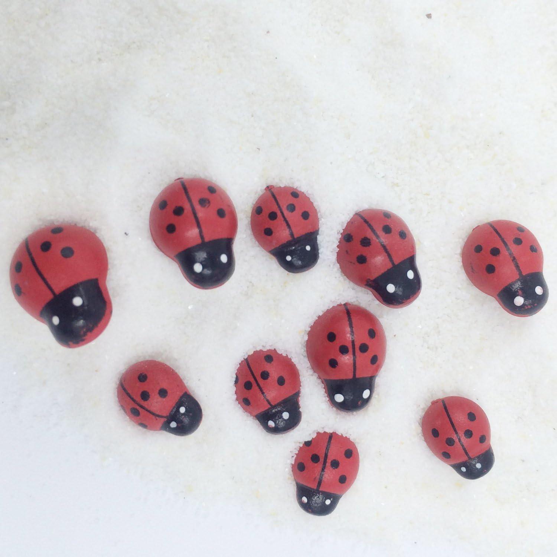 10 Assorted Size Ladybug Insect Aquarium Terrariums Miniature Garden Fairy Gardens Ornament Doll House Cake Topper Resin Figurine Decoration