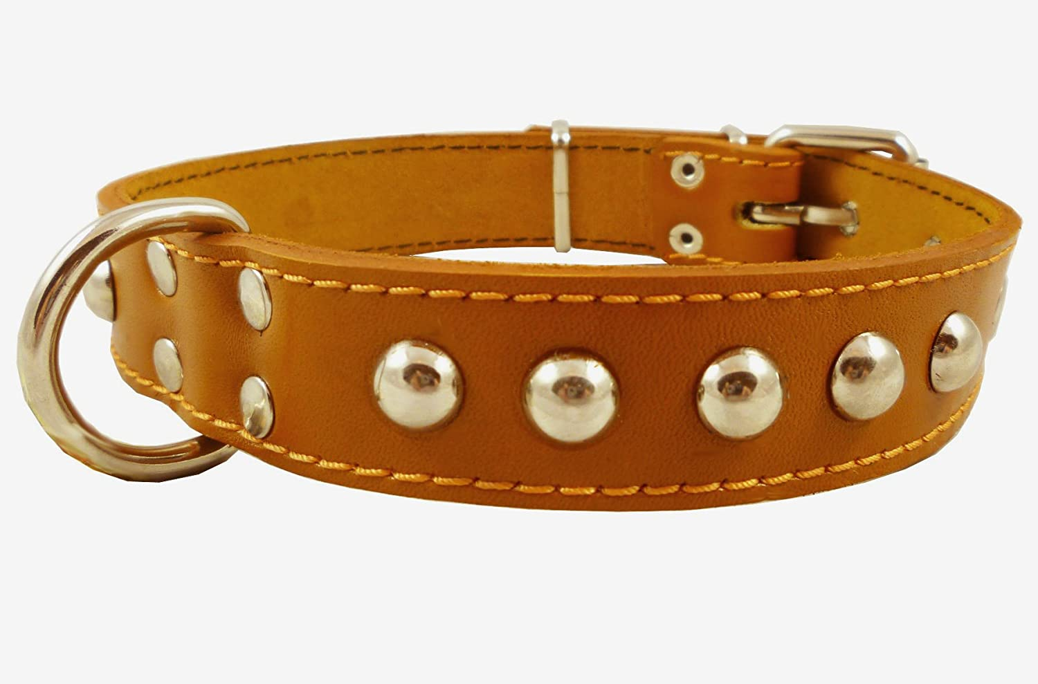 Genuine 1.25  Wide Thick Leather Studded Dog Collar. Tan, Fits 15 -19  Neck, Medium Breeds.