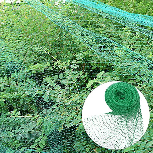 EFFT Life Green Anti Bird Protection Net Mesh, Bird Netting Garden Plant Netting Protect Protect Plants Fruit Trees Long Lasting Protection Against (Bush Tomato Plants)