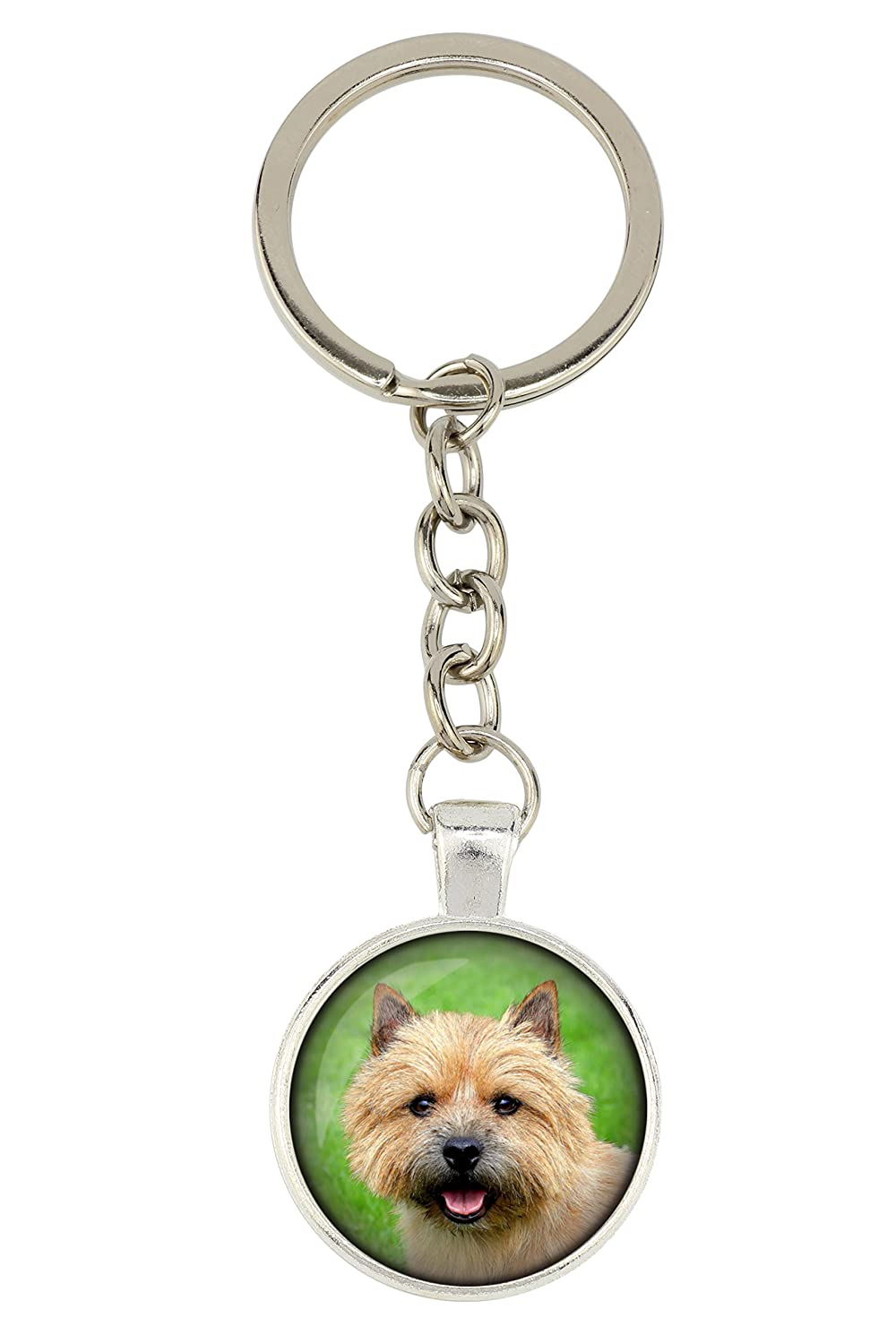 Dog Pendant for Dog Lovers Norwich Terrier Photo-Jewelry Box Handmade