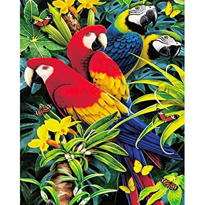 Lavany Birds Cat Dogs 5D Diamond Paintings Kits,Full Drill DIY 5D Diamond Paints by Number Kits Embroidery Rhinestone Pasted Wall Decor Clearance (Birds): Toys & Games