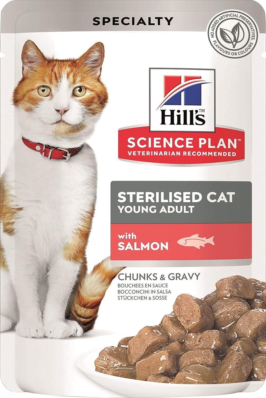 Hills Pet Nutrition S.L. SP Sterilised Cat Fish 12 Bolsitas/85G 1942Le* 1000 g