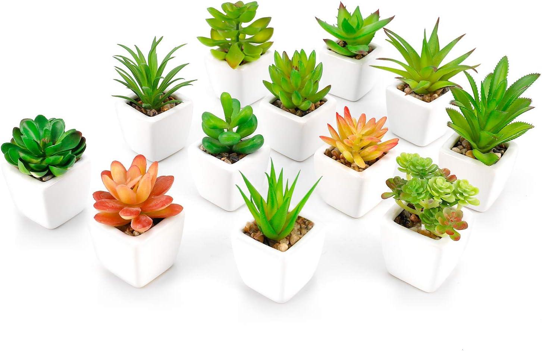 Fake Succulent Plants in Pot Mini Artificial Plants Potted Faux Succulents for Home Office Cactus Decor, Set of 12