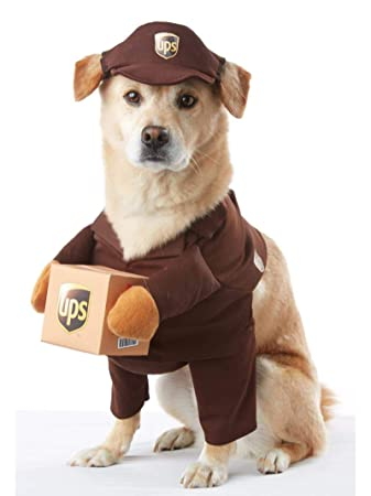 Image result for ups dog costume