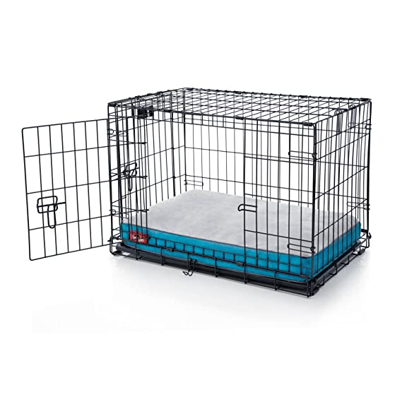 Brindle Cama de Espuma viscoelástica Brillante para Perro con Funda extraíble Lavable - 55,88 x 40,64 cm - Verde Azulado: Amazon.es: Productos para mascotas