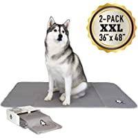 """Trendy Den Creations - Washable Pee Pads for Dogs - Reusable Puppy Training Pads - 36""""X48"""" 2 Pack Dog Training Pads Extra Large - Dog or Cat Bed - Whelping Pads Dog Kennel or Crate Puppy Pee Pads"""