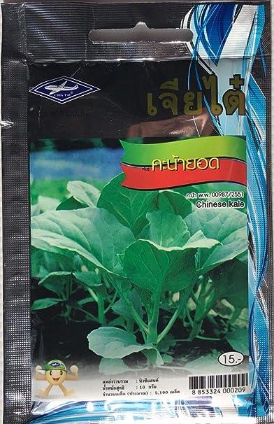 AGROBITS 10 G 2190 Semillas Plan de vegetales chinos Kale ...