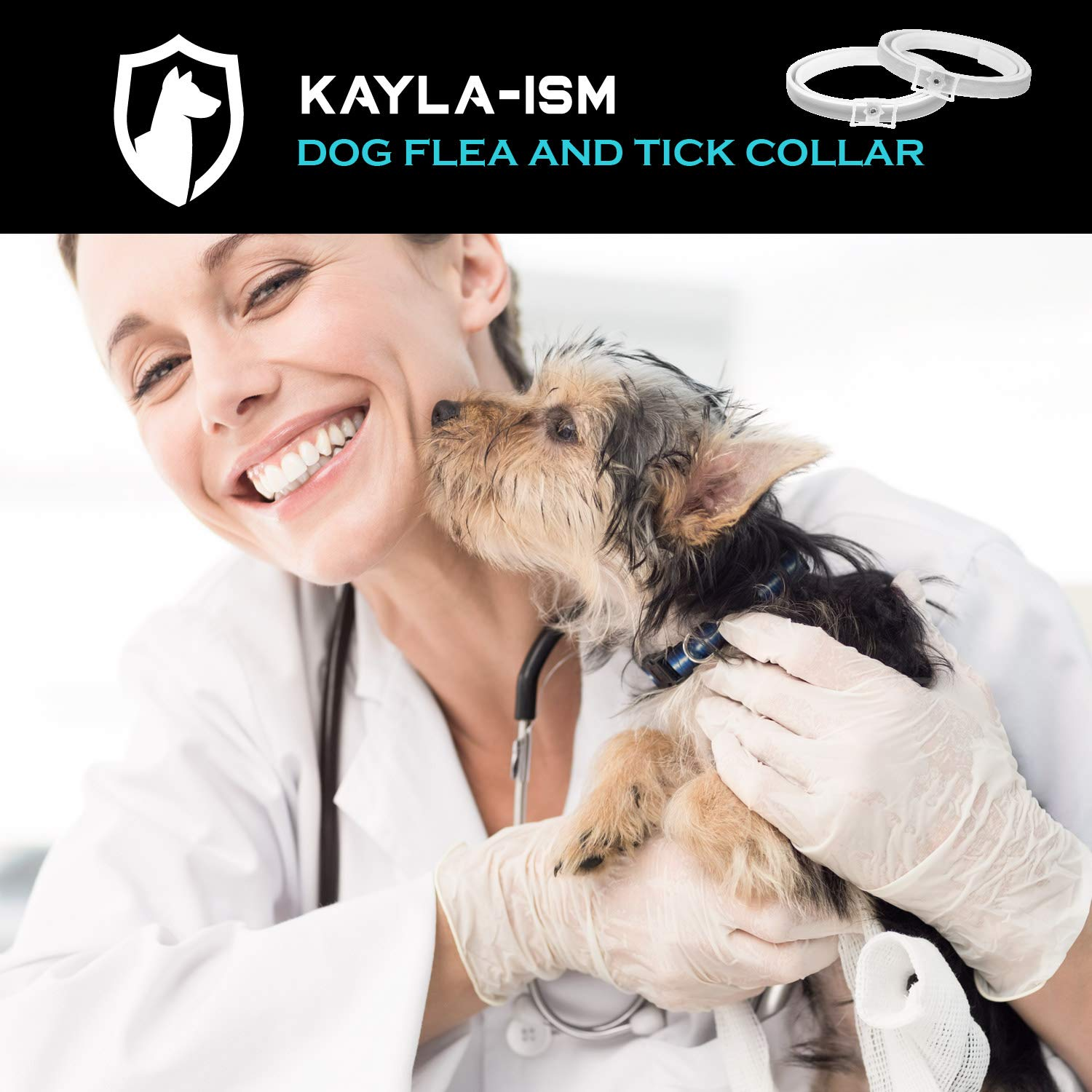 Kayla-ism Dog Flea and Tick Collar, Natural and Essential Oils, Waterproof, One Size Fits All, 8 Months Full Protection, Healthy and Harmless by Kayla-ism (Image #5)