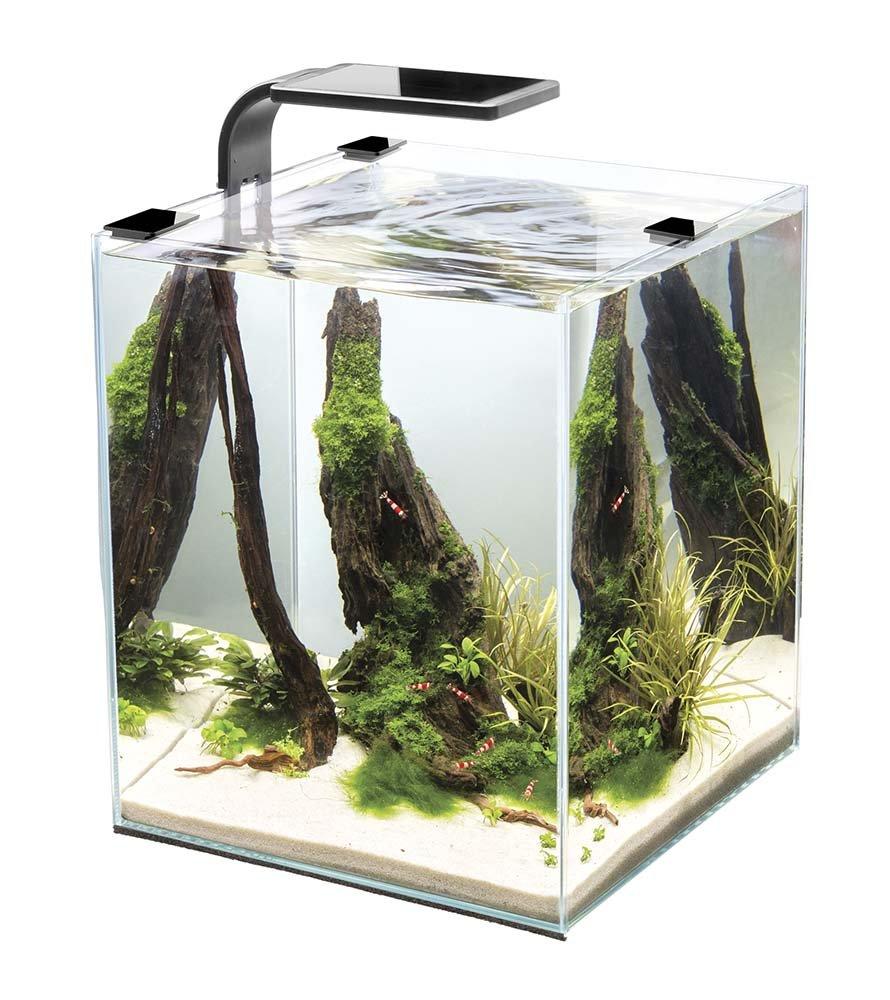 Cobalt Aquatics 14010 Microvue3 10 Aquarium Kit by Cobalt Aquatics