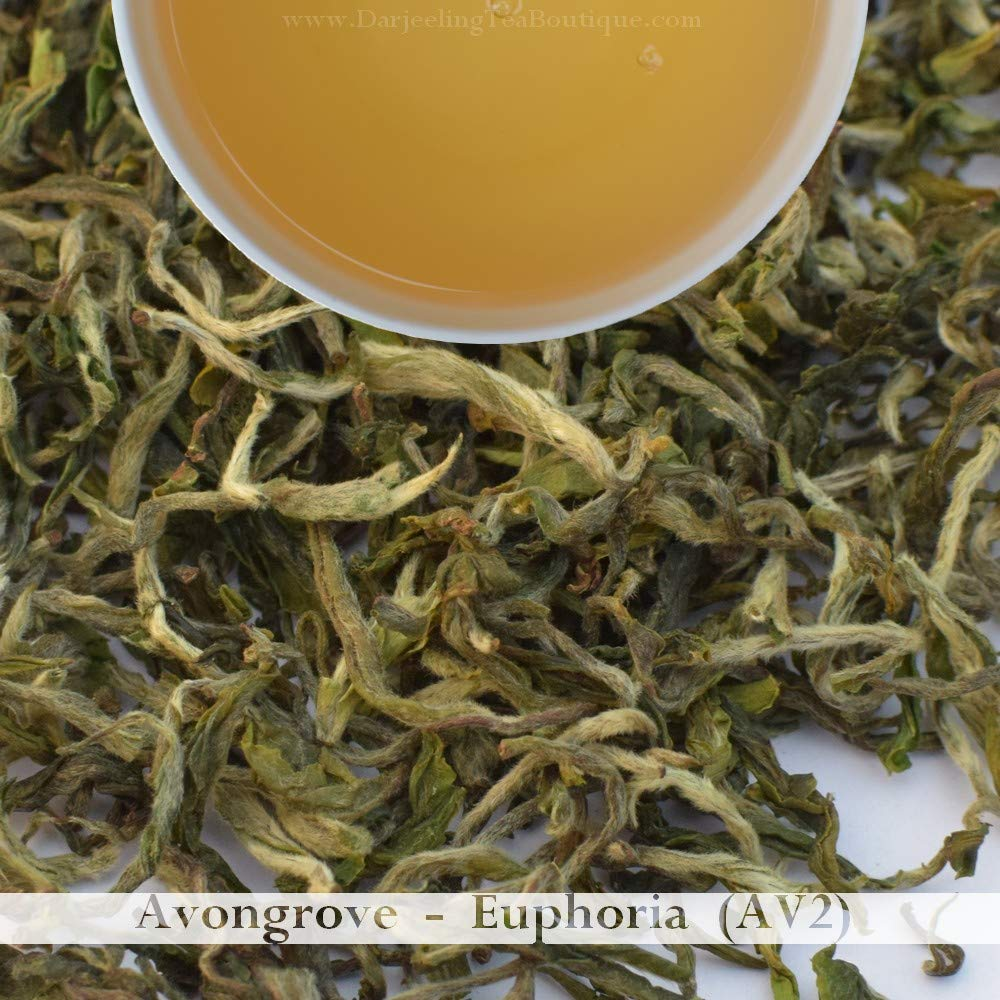 2019 Darjeeling first flush Black Tea   Avongrove Euphoria (AV2)   500gm (1.1lb) 200+ cups   Darjeeling Tea Boutique