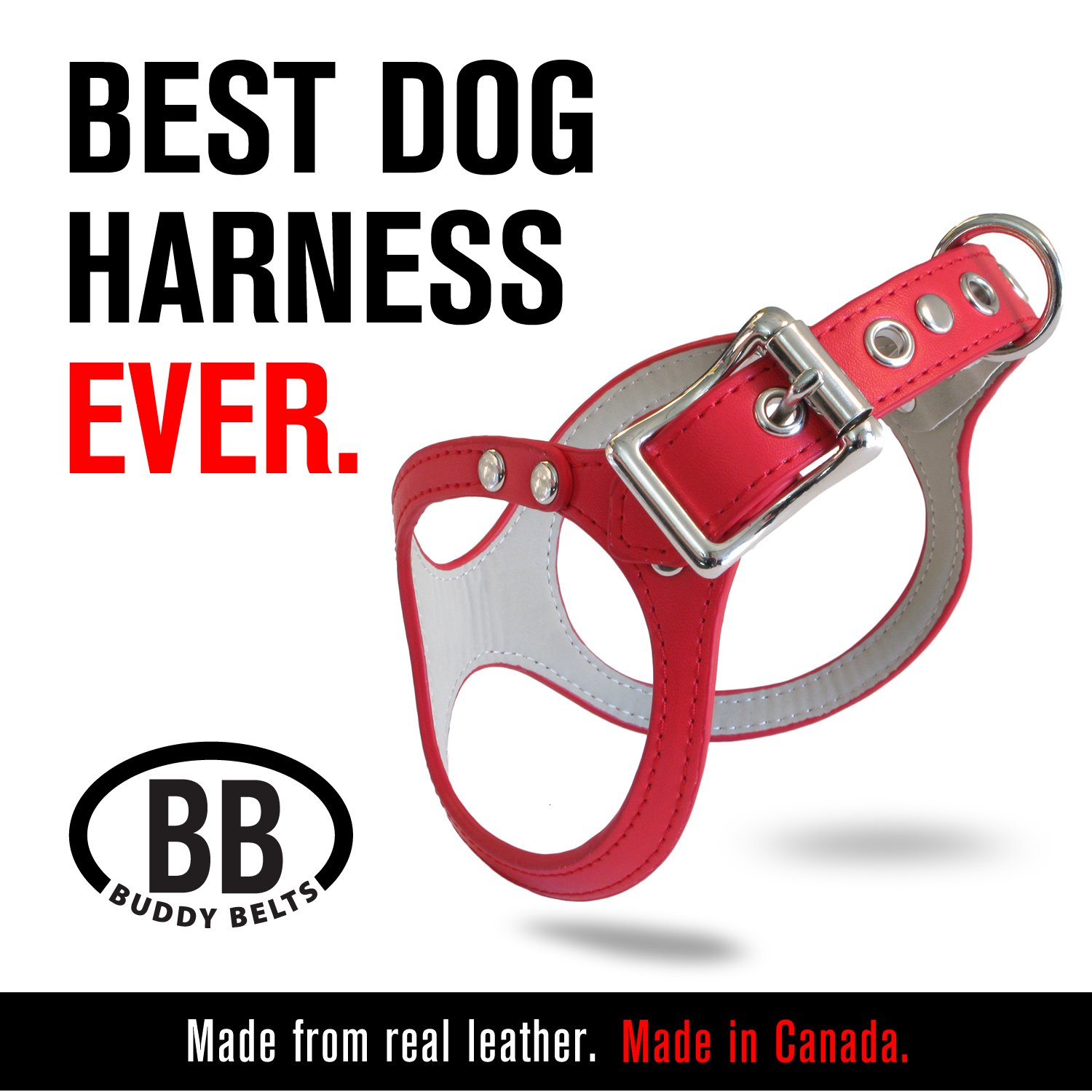 Buddy-belts ORIGINAL DURABLE Classic LEATHER Dog Harness (Red, Size 10)