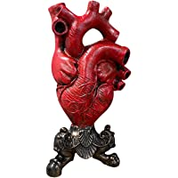 Anatomical Heart Vase 9.75'' Resin Flower Pot Planter Desktop Ornament Home Decoration