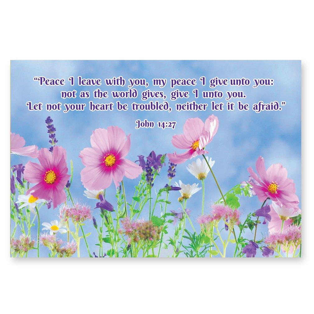 Amazon Bible Quotes Postcard Set Of 20 Postcards Christian