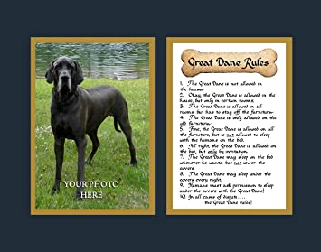 dog rules great dane wall decor pet saying dog saying - Dane Decor
