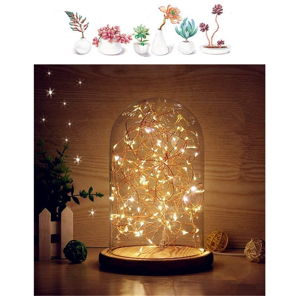 Glass Dome Bedside Table Lamp Bell Jar Display Dome Bamboo Base String USB LED Decorative Lamp with LED Warm Fairy Starry String Lights ideal for Decoration Anywhere By Erosom.(Warm White) by Erosom (Image #1)
