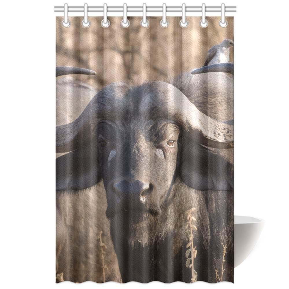 CTIGERS Animal Theme Shower Curtain for Kids Funny Bird on the Bison Polyester Fabric Bathroom Decoration 48 x 72 Inch