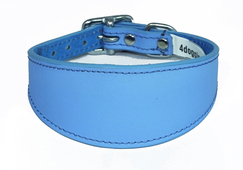 4doggies Collier en cuir pour chien lévrier whippet Bleu uni 30-35 cm
