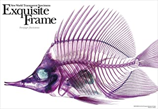 Prism Art New World wClear Specimenx 108piece Beauty of the Skeleton (Yellow longnose butterflyfish) 61-05