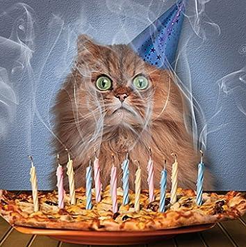 Fabulous Cat Birthday Card Pizza Cake Amazon Co Uk Office Products Funny Birthday Cards Online Necthendildamsfinfo