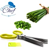 Herb Scissors Multipurpose Kitchen Shears Stainless Steel 5 Blade with Cleaning Brush Chuzy Chef