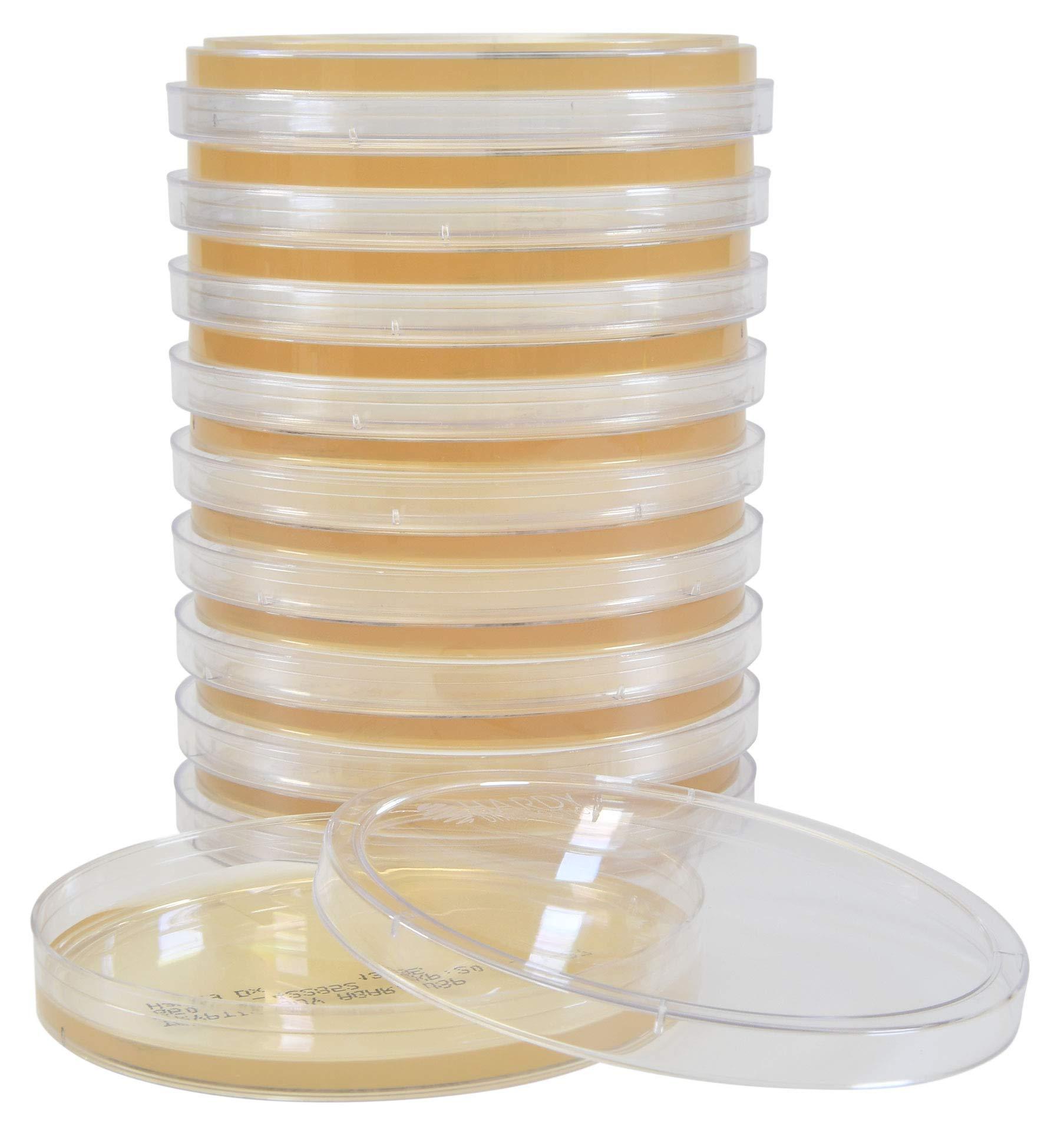 Tryptic Soy Agar (TSA), USP, a General Growth Medium for Microorganisms, 10 Plates Per Pack, by Hardy Diagnostics by Hardy Diagnostics