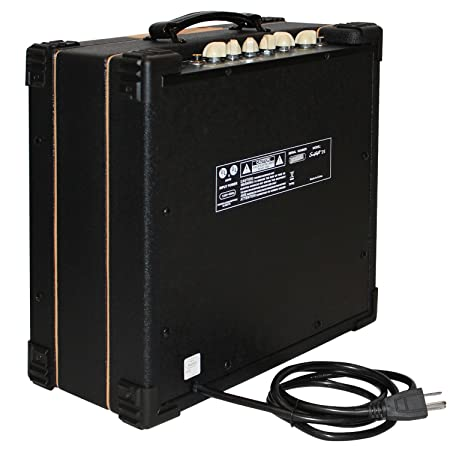 Amazon.com: Sawtooth Two Channel 25 Watt Electric Guitar Amp with Reverb: Musical Instruments