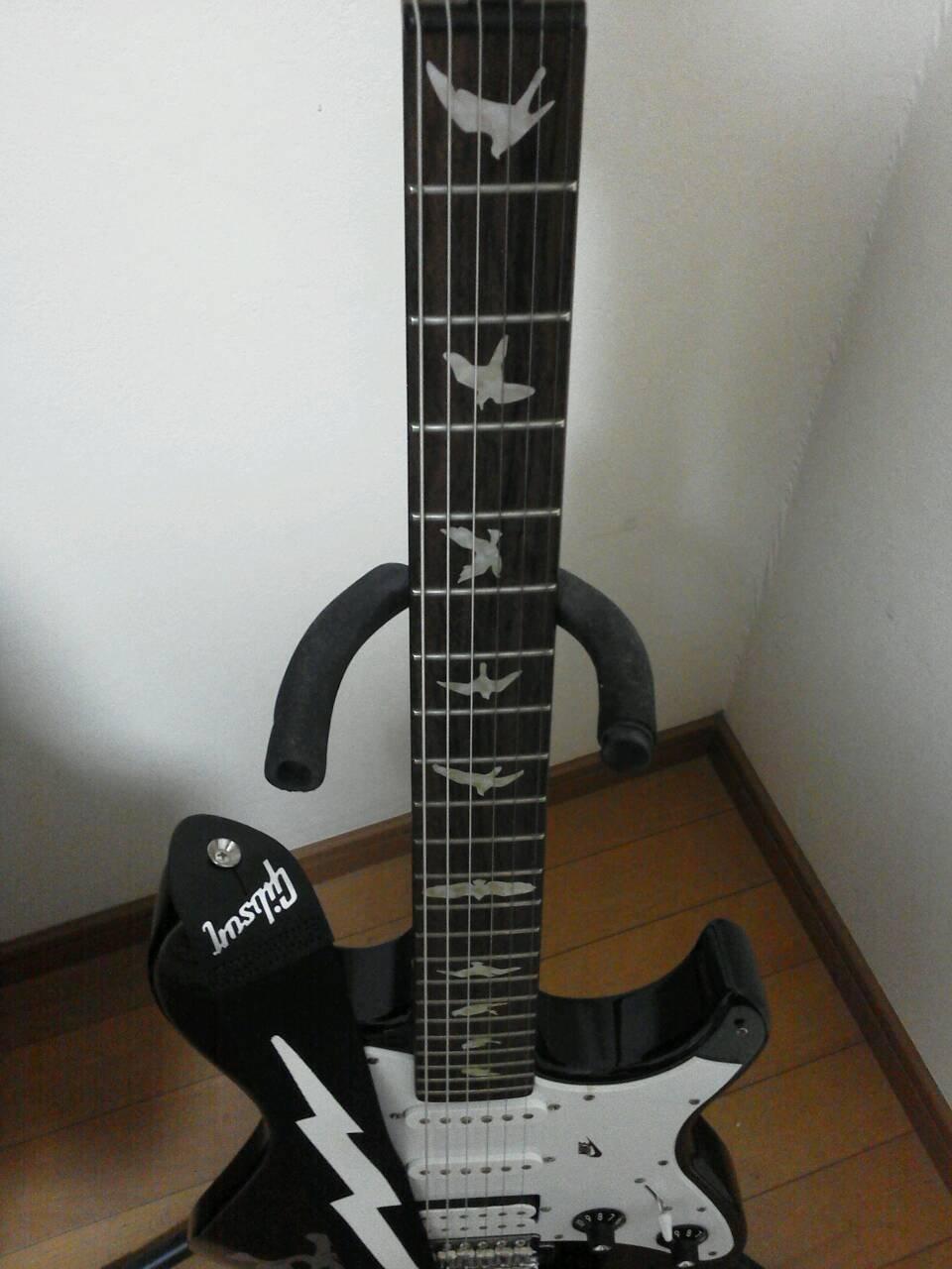 Pegatinas para guitarras y bajos, diseño de pájaros: Amazon.es: Instrumentos musicales