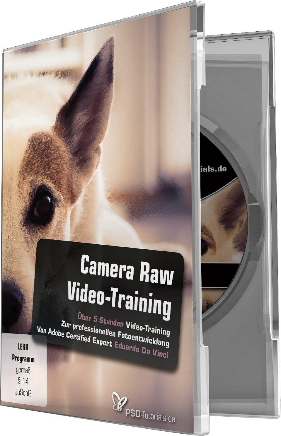 Camera Raw-Video-Training: Perfektion lässt sich regeln!