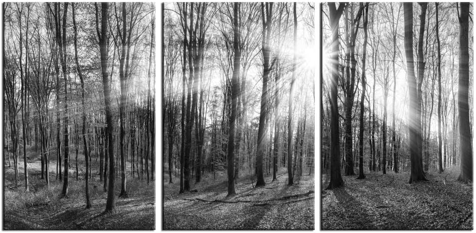 LevvArts - 3 Panel Canvas Wall Art Black and White Forest Picture Art Prints Winter Sunrise Nature Landscape Painting Contemporary Artwork for Bedroom Living Room Office Wall Decor Framed Easy Hanging